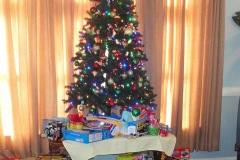 2011 Roane  Consulting Toy Drive