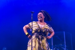 2017 Jazz in the Gardens - Day One